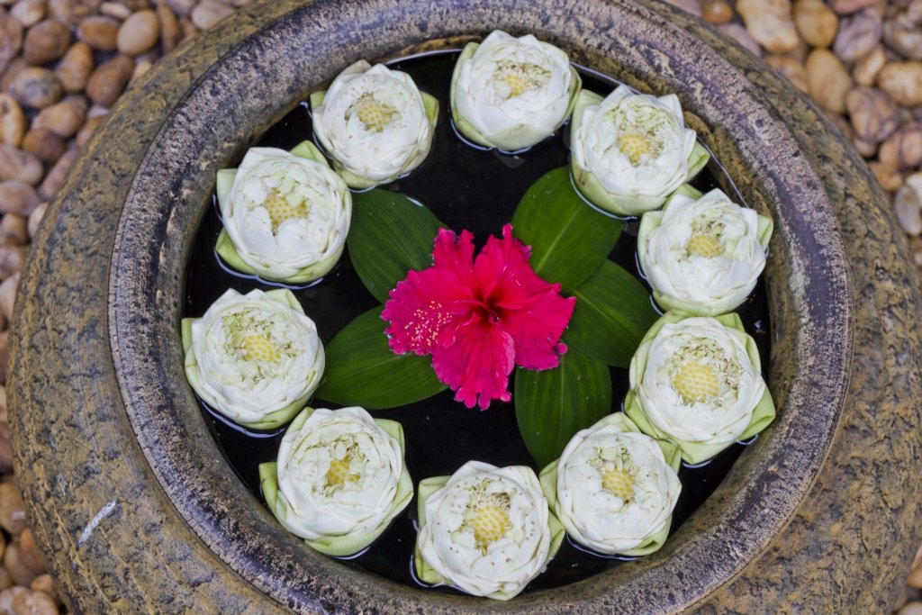 Lanna Hotel  luxurious Spa Retreat on Koh Samui face treatment