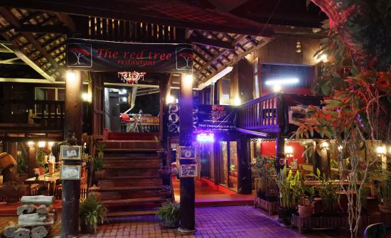 The Red Tree restaurant - Chiang Mai